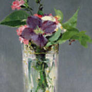 Pinks And Clematis In A Crystal Vase Poster