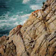 Point Lobos California Poster