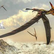 Pteranodon Birds Flying - 3d Render Poster