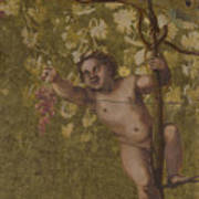 Putto Gathering Grapes Poster