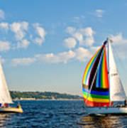 Rainbow Sails Poster