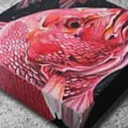 Red Snapper Poster
