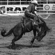 Rodeo Saddleback Riding 5 Poster