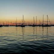 Sailboats At Sunrise  Poster