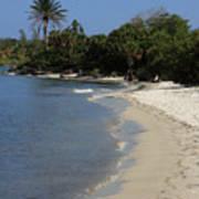 Sanibel Island Lagoon Poster