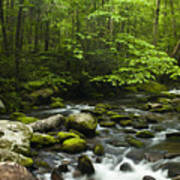 Smoky Mountain Stream Poster by Andrew Soundarajan