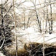Snow-covered Stream Banks, Pennsylvania Poster