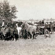 South Dakota: Cowboys Poster