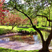 Spring At Tappan Park Pond Poster