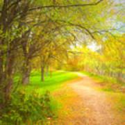 Spring Pathways Poster