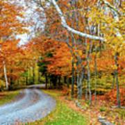 Stone Autumn Road Poster