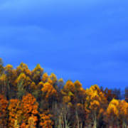 Stormy Sky Last Fall Color Poster by Thomas R Fletcher