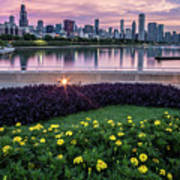summer flowers and Chicago skyline Poster