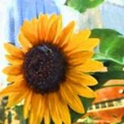 Sunflower In The City Poster