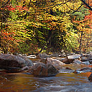 Swift River - White Mountains New Hampshire Usa Poster