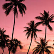 Tahiti, Papeete Poster