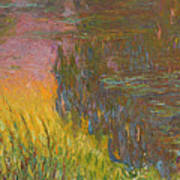 The Water Lilies, Setting Sun Poster