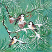 Three Little Chickadees In Pine Poster