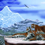 Tigers On A Ledge Poster