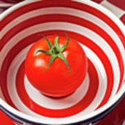 Tomato In Red And White Bowl Poster by Garry Gay