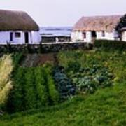 Traditional Cottages, Co Galway, Ireland Poster