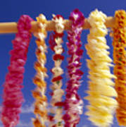 Tropical Leis Poster