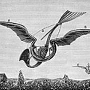 Trouv�s Ornithopter Poster by Granger