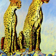 Two Cheetahs Poster