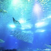 Undersea Deep Background Poster