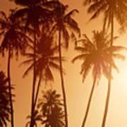 View Of Tahiti Poster