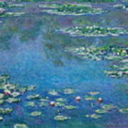 Water Lilies 1906 Poster