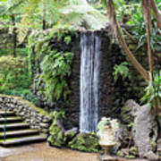 waterfall in tripcal garden Monte Madeira Poster