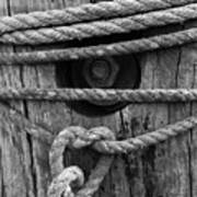 Weathered Rope Poster