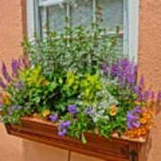 Window Box Blooms Poster