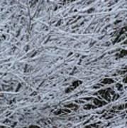 Winter At Dusk Poster