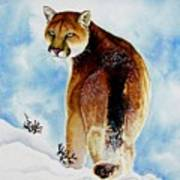 Winter Cougar Poster