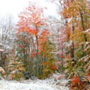 Winterfall  Poster