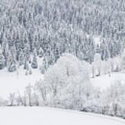 Winter Landscapes Poster