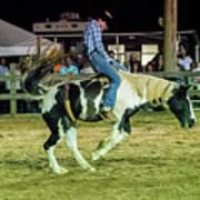 Bronco Riding Poster