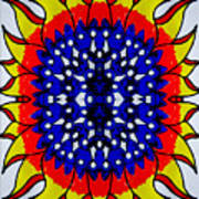 Sunburst Flower Poster