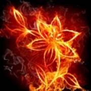 112775 Flowers Fire Poster