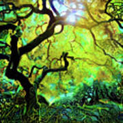 12 Abstract Japanese Maple Tree Poster