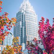 Aututmn Season In Charlotte North Carolina Poster