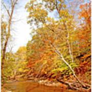 Pennsylvania Stream In Autumn Poster