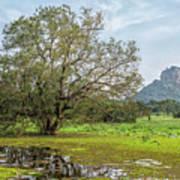 Sigiriya - Sri Lanka Poster