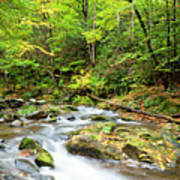 1266 Great Smoky Mountain National Park Poster