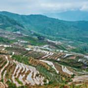 Longji Terraced Fields Scenery Poster