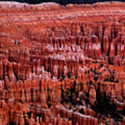 Bryce Canyon N.p. Poster