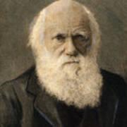 Charles Robert Darwin, 1809-1882 Poster