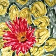 Divine Flowers Poster